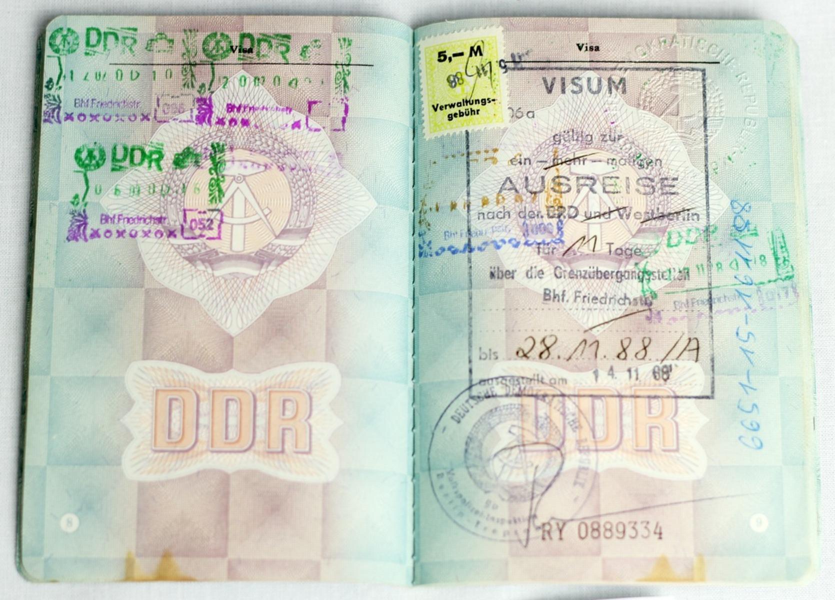 CD01-004-G50-M56-IMG_5761.jpg