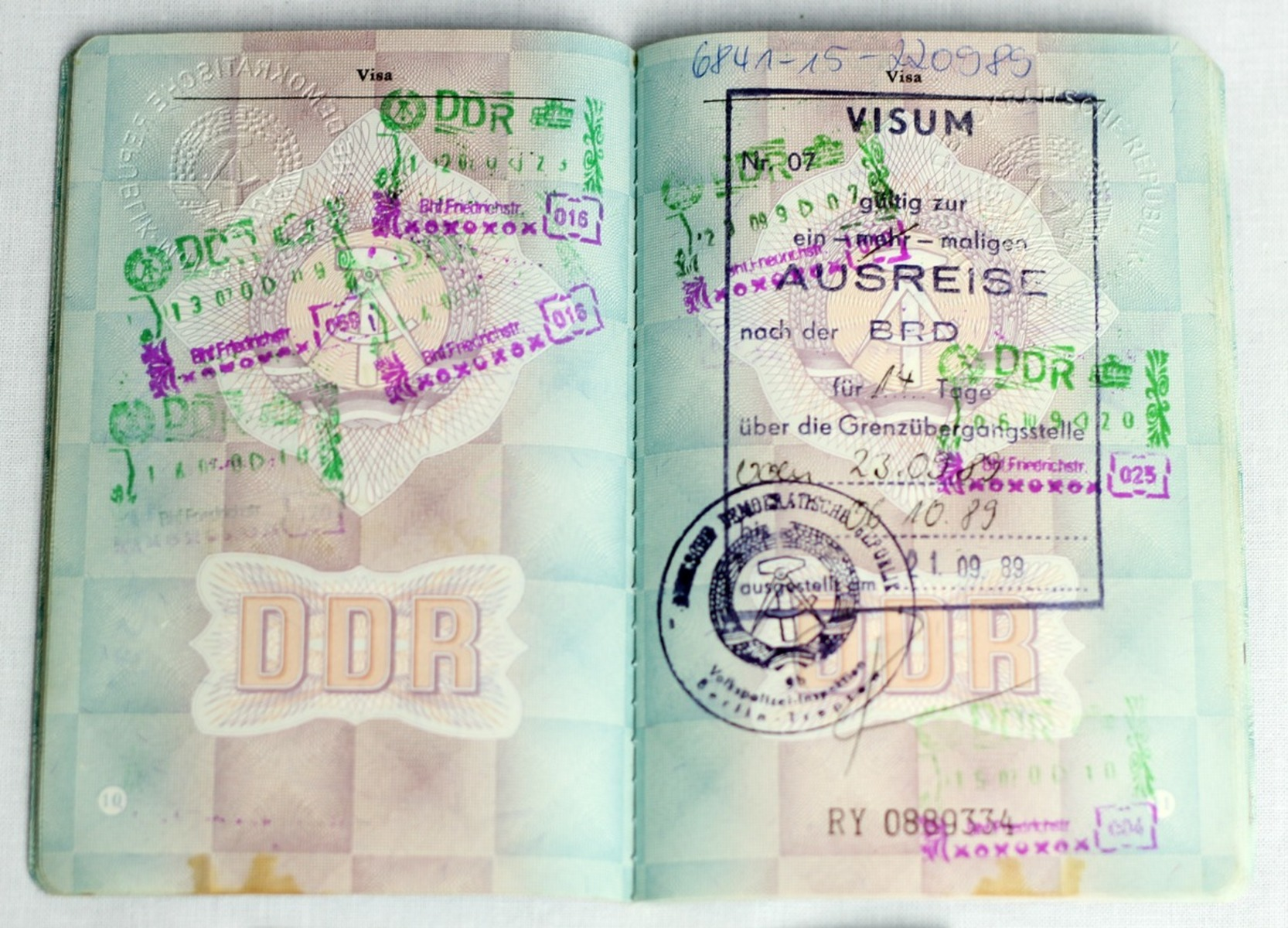CD01-004-G50-M56-IMG_5763.jpg