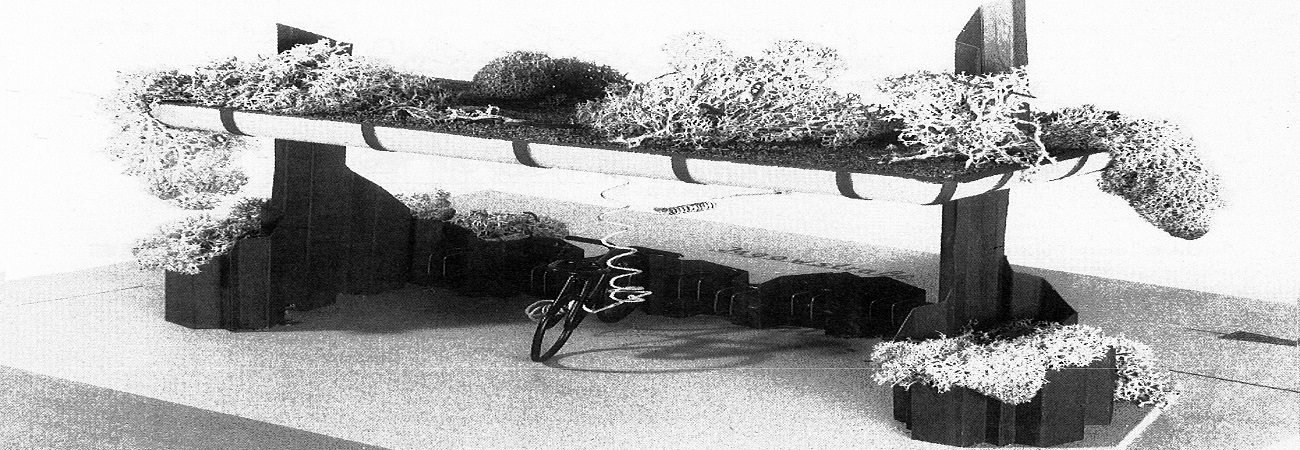 Vom Autoparkplatz zum Fahrradstellplatz –<br /><br /> Ein Wettbewerb für einen neuen Fahrradständer 1988